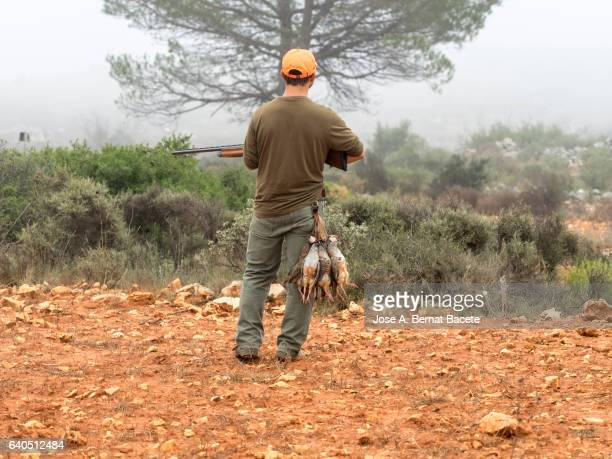 attentive hunter in the field with his shotgun and a few dead hung partridges of his belt - dead dog imagens e fotografias de stock