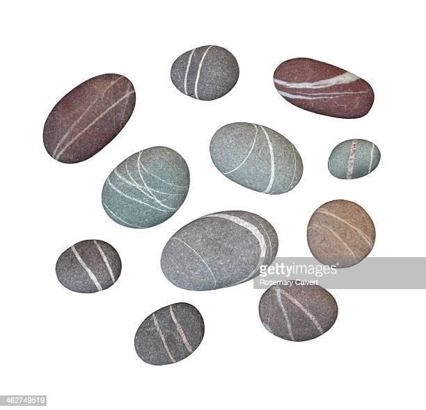 Attractive granite pebbles with quartz veins