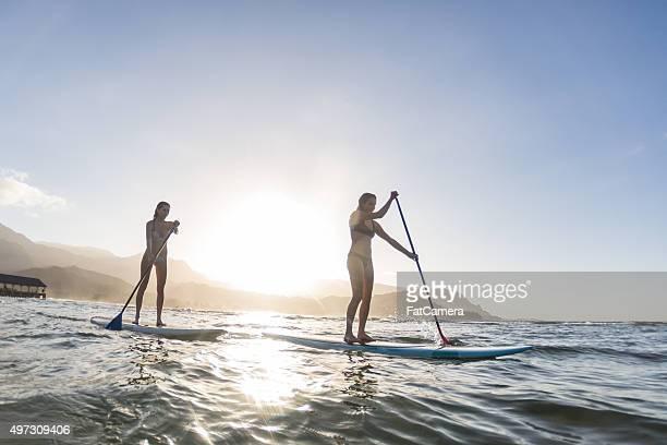 Attractive hawaiian female surfer at the beach