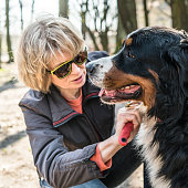 http://www.istockphoto.com/photo/attractive-mature-50-years-old-woman-brushing-the-bernese-mountain-dog-gm678954568-124466617