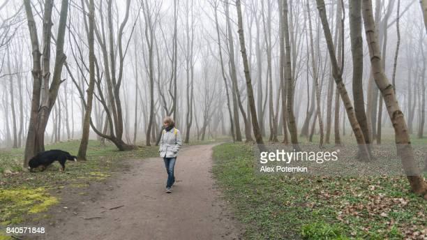 atractivo maduro, 50 años de edad, mujer paseando al perro en el bosque de niebla - 50-59 years and women only fotografías e imágenes de stock