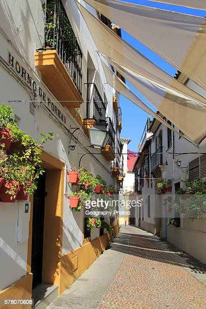 Attractive shaded houses cobbled street in of part of city Horno de Porras Cordoba Spain