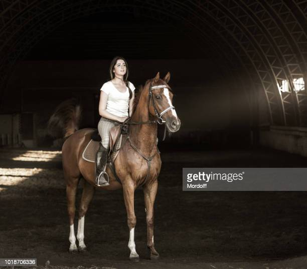 attractive slim woman riding horse. full-length portrait - bay horse stock photos and pictures