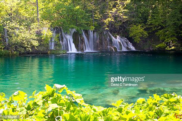attractive waterfall, plitvice np, croatia - beauty in nature stock pictures, royalty-free photos & images