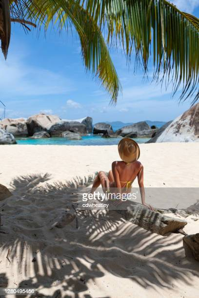 atractiva mujer relajándose bajo una palmera en una playa tropical - islas de virgin gorda fotografías e imágenes de stock