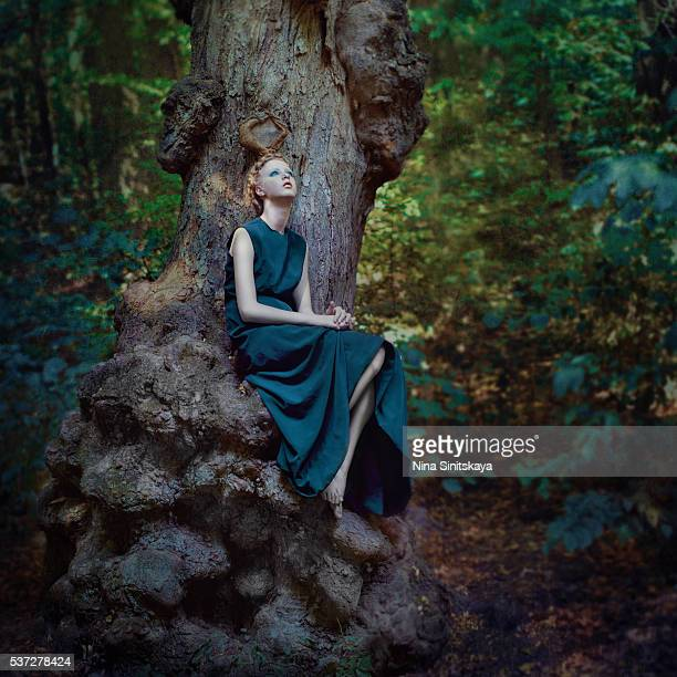 Attractive young woman in a long dress sitting on a big twisted tree in the forest