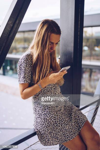 attractive young woman in leopard print dress checking cell phone - animal pattern stock pictures, royalty-free photos & images