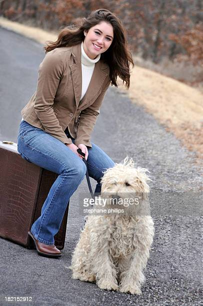 attractive young woman sitting with her wheaten terrier - soft coated wheaten terrier stock photos and pictures