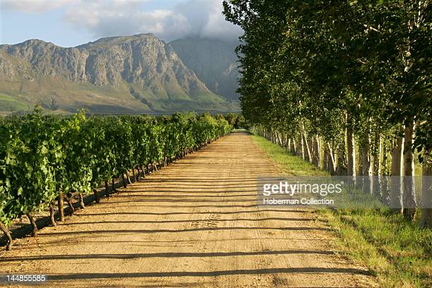 Auberge Clermont Luxury Retreat Franschhoek South Africa's Wine Route