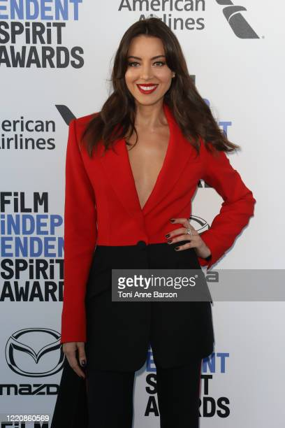 Aubrey Plaza attends the 2020 Film Independent Spirit Awards on February 08 2020 in Santa Monica California