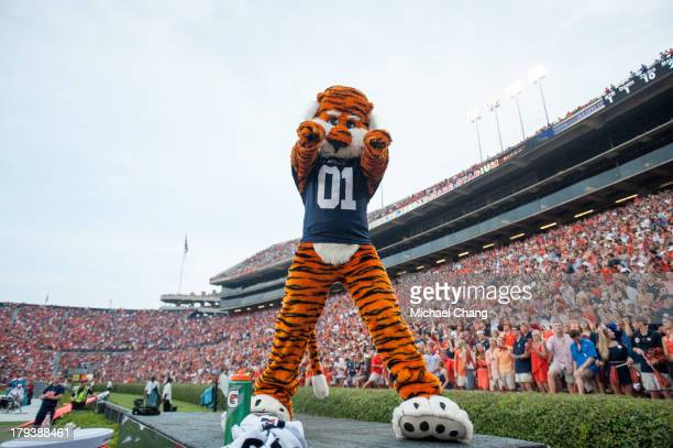 Auburn University's mascot Aubie helps cheer his team during their game against the Washington State Cougars on August 31 2013 at JordanHare Stadium...