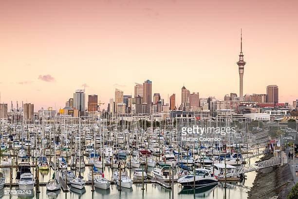 Auckland city and harbour at sunset, New Zealand
