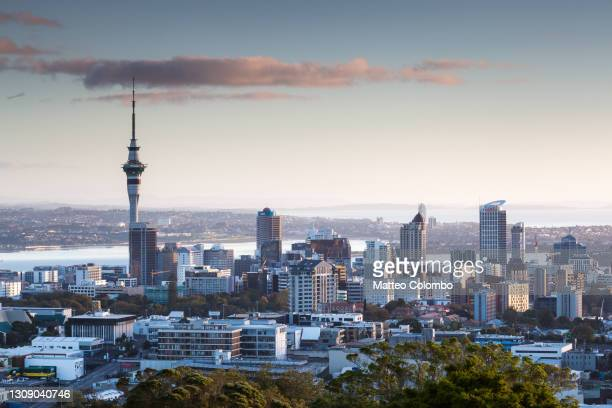 auckland city elevated viw at sunrise, new zealand - auckland stock pictures, royalty-free photos & images