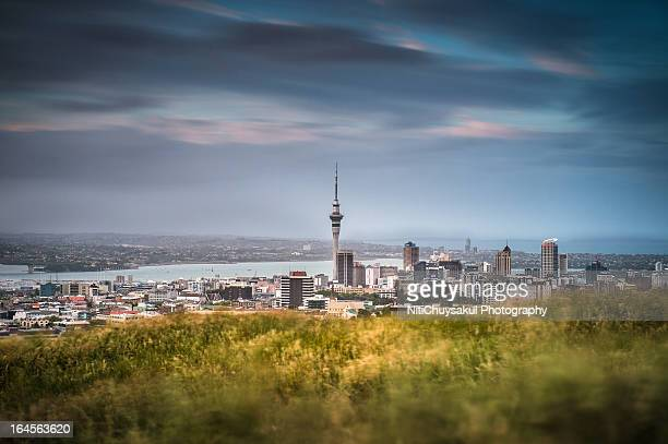 Auckland city from Mt. Eden