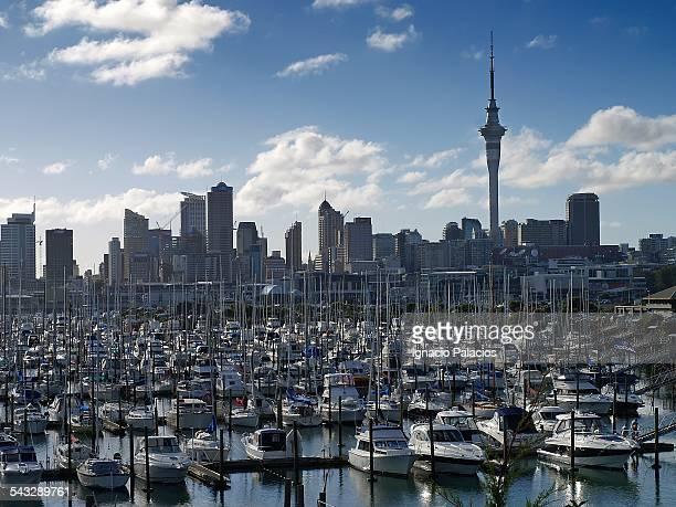 Auckland city landscape