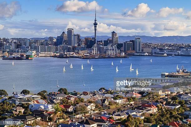 Auckland City View NZ