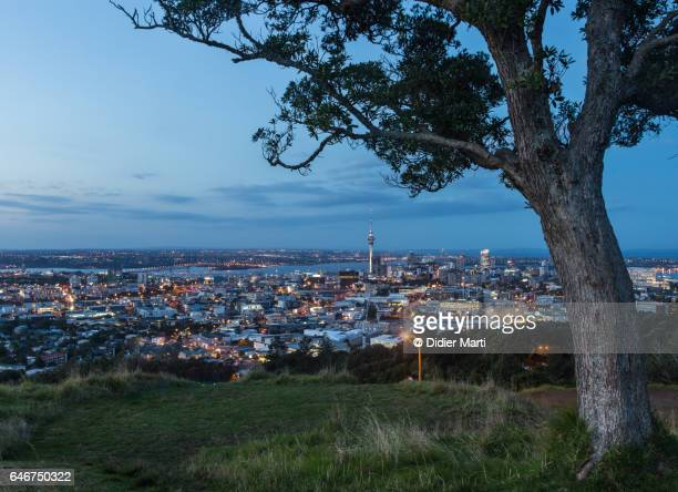 Auckland cityscape at night from Mount Eden in New Zealand