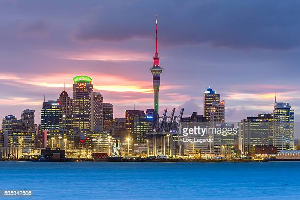 auckland cityscape from davenport at dusk - lagarde stock photos and pictures