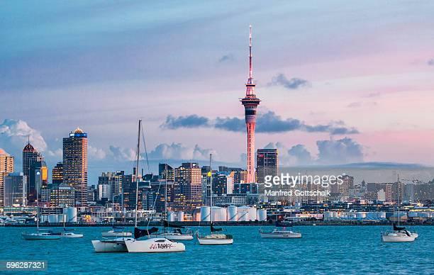 Auckland evening skyline