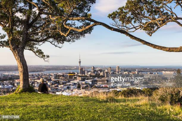 auckland from mount eden in new zealand - auckland stock pictures, royalty-free photos & images
