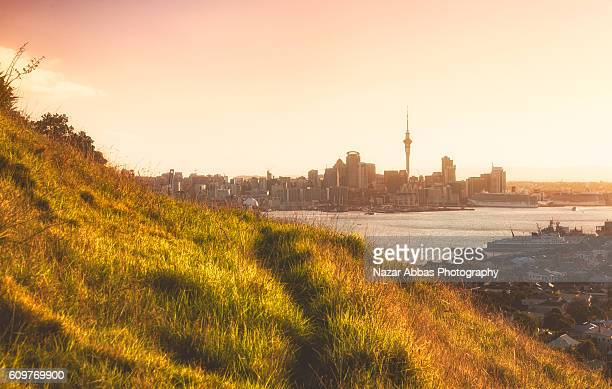 auckland from mt victoria. - waitemata harbor stock photos and pictures