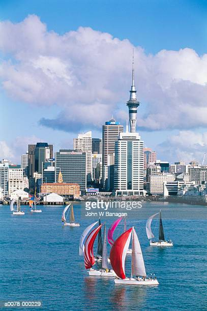 auckland harbor - waitemata harbor stock photos and pictures