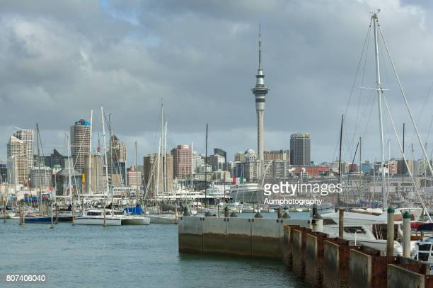 auckland harbour - waitemata harbor stock photos and pictures