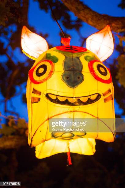Auckland Lantern Festival; March 3, 2018
