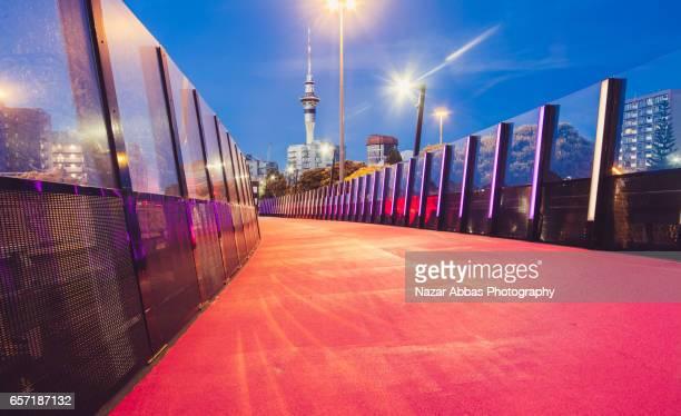 Auckland Light Path.