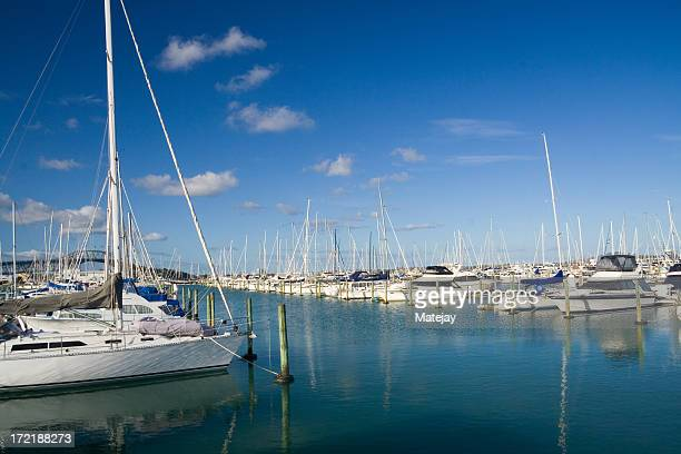 auckland marina, new zealand - moored stock pictures, royalty-free photos & images