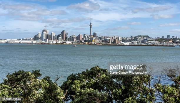 auckland - waitemata harbor stock photos and pictures