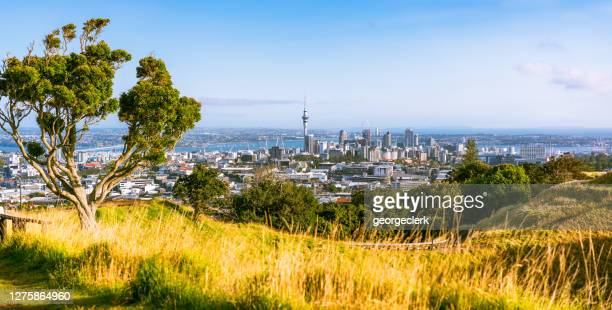 auckland scenic - auckland stock pictures, royalty-free photos & images