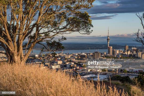 Auckland skyline, view from Mt Eden, North Island, New Zealand