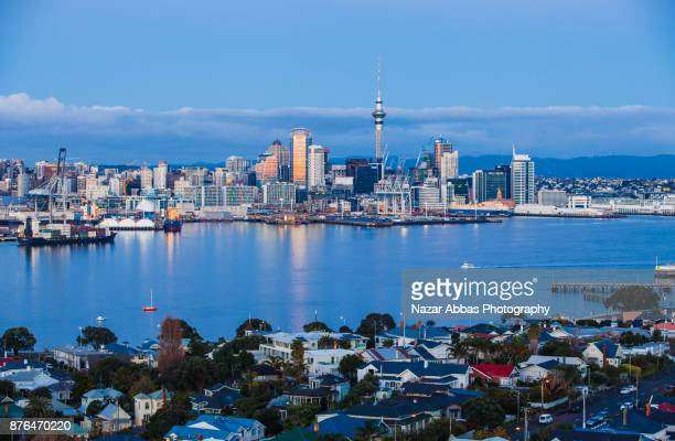 Auckland Skyline with houses in background.