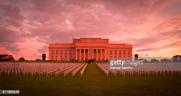auckland war memorial and museum with crosses in front from distance - auckland museum stock photos and pictures