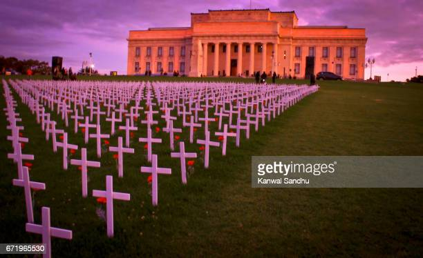 auckland war memorial and museum with crosses in front - auckland museum stock photos and pictures