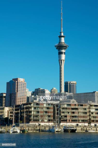 Auckland's Sky Tower soars above Viaduct Harbour.