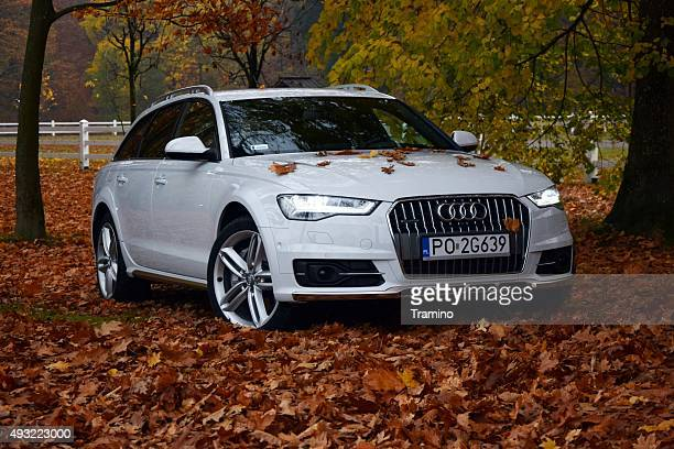 audi a6 allroad in autumn scenery - audi a6 stock photos and pictures