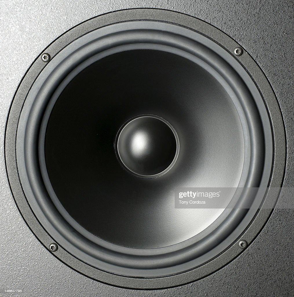 Audio speaker cone : Photo