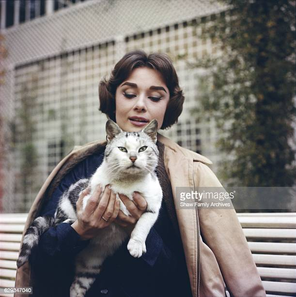 Audrey Hepburn poses a bench with a cat in 1957 in Paris France