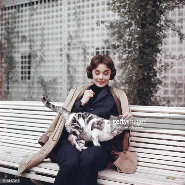 Audrey Hepburn sits on a bench with a cat in 1957 in Paris France