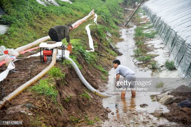 SHOUGUANG Aug 12 2019 Farmers get rid of water from a flooded greenhouse in the aftermath of Typhoon Lekima in Dongfangxi Village of Jitai Township...