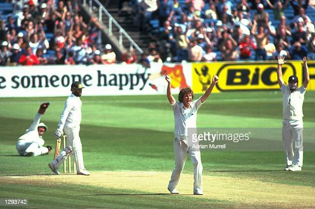 Bob Willis of England has Ray Bright of Australia caught behind by Alan Knott during the Fifth Ashes Test match at Old Trafford in Manchester England...