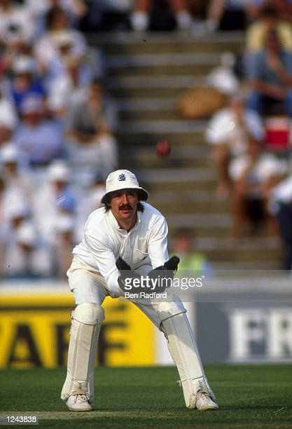 England wicketkeeper Jack Russell in action during the 6th Test against Australia at the Oval