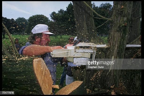 Craig Stadler cuts down a tree at Torrey Pines Golf Course in San Diego California Mandatory Credit Stephen Dunn /Allsport
