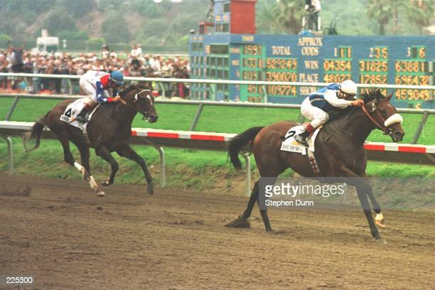 Jockey Alex Solis crosses the finish line aboard Dare And Go ahead of Cigar ridden by Jerry Bailey during the Pacific Classic at Del Mar Race Track...