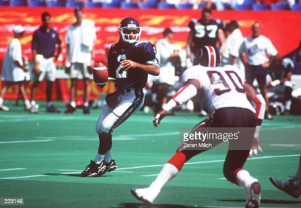 Quarterback Doug Flutie of the Toronto Argonauts drops back to pass during the game against the Saskatchewan Roughriders at the Skydome in Toronto,...