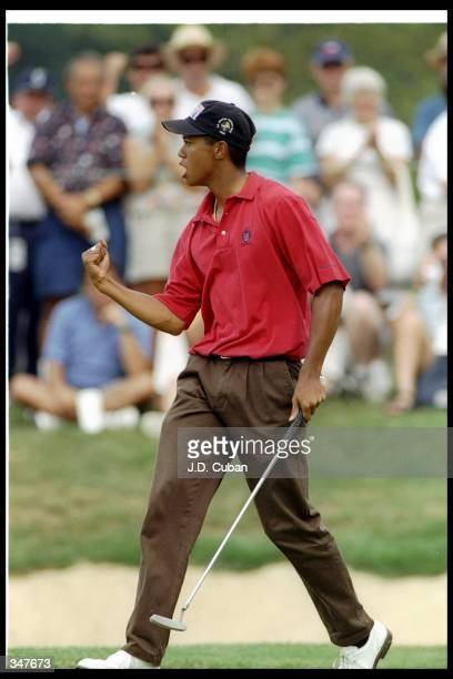 Tiger Woods celebrates after scoring an eagle during the U.S. Amateur Championships at the Pumpkin Ridge Golf Course in Cornelius, Oregon.