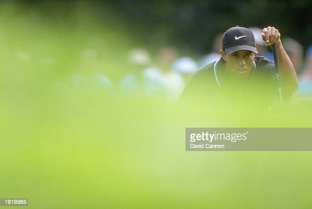 Tiger Woods of the USA in action during the PGA Championship at the Winged Foot Golf Course in Mamaroneck New York USA Mandatory Credit David...