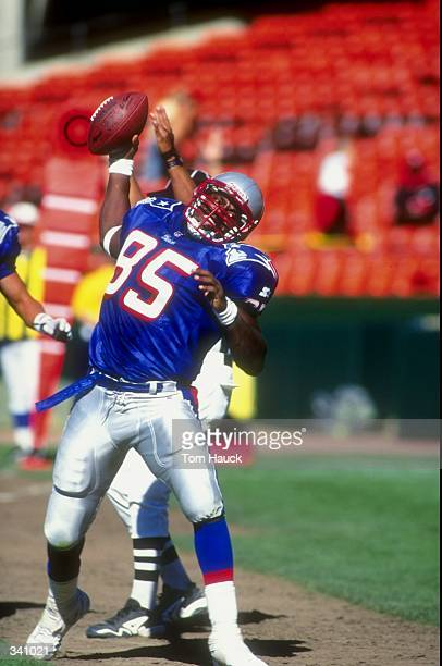 Tight end Lovett Purnell of the New England Patriots in action during a preseason game against the San Francisco 49ers at the 3Com Park in San...